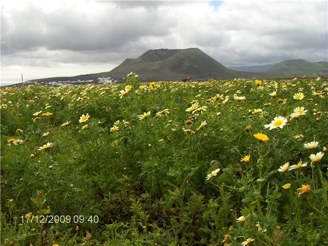 Lanzarote février 2010